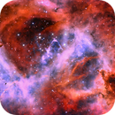 Rosettes are Red - Bicolour NGC 2237,                                Andy 01