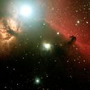 Horsehead Nebula,                                David Holko