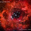 Rosettennebel und NGC 2244,                                Stefan Zimmermann