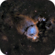 IC 1795    The Fishhead,                                Greg Ray