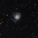 M101 Widfield,                                Dennis Sprinkle