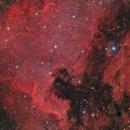 NGC 7000 North America Nebula & IC 5070 Pelican Nebula,                                Bernhard Zimmermann