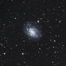 NGC300,                                Richard Muhlack