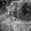 Dust clouds in the Rosette nebula in Ha,                                Mike