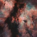 IC1318 - The Butterfly nebula,                                OlympusMons-UMONS