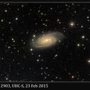 NGC 2903, UHC-S, 23 Feb 2015,                                David Dearden