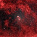 NGC 6888,                                Roi Levi