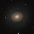 M94,                                nyda83