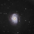 """NGC 4535 """"La galaxie perdue"""" constellation de la Vierge,                                Roger Bertuli"""