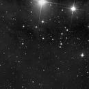 PGC13696,                                Kevin Parker