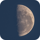 Morning Moon,                                Lorenzo Palloni