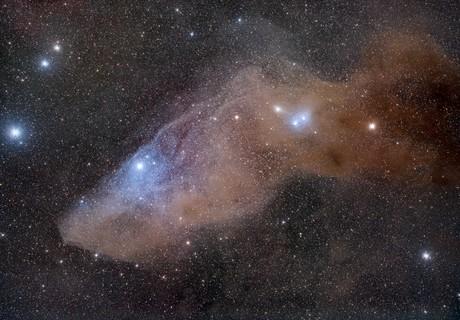 Blue Horsehead, IC 4592,                                Jeff Bottman