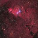 NGC 2264 – 2018,                                Peter Folkesson