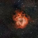 Rosette Nebula (Optolong l-eNhance),                                Paolo Demaria