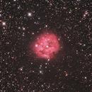 Cocoon- Nebula,                                Bastian_H