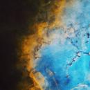 Starless Rosette Nebula,                                Anca and Ioan Ast...