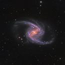 NGC 1365, Great Barred Spiral Galaxy in Fornax,                                José Joaquín Pérez