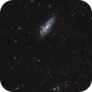 NGC 4559 Galaxy in Coma Berenices,                                Bernhard Zimmermann