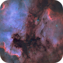 Shadows of The North America Nebula (Bi-Color HA-OIII),                                Terry Hancock