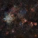 NGC 2070  ( Nebulosa de la Tarántula),                                Andrés González
