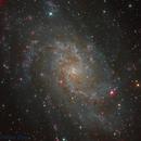 Triangulum Galaxy (Messier 33),                                Miles Zhou