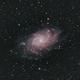 M33 - Triangulum Galaxy,                                Tom