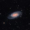 NGC2903 in Leo  Version 2,                                Arnaud Peel