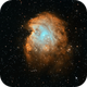 Sh2-252/NGC2174, NGC2175 in H-HO-O-RGB,                                Uwe Deutermann