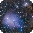 Blue Fish Head --------- IC447/IC2169,                                WildDuck