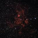 NGC6357 -  Lobster Nebula in Scorpius,                                Marcelo Alves