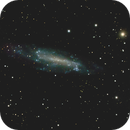 NGC 4236,                                pinzmann