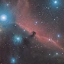 Horsehead Nebula with hypestar,                                Alessandro Bianconi