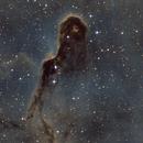 IC1396 (Elephant's Trunk Nebula),                                Larry Lart