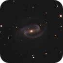 NGC 1300,                                papilain