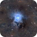 NGC7023 The Iris Nebula,                                Thomas Kings