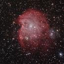 NGC2174, la tête de singe,                                Cédric Thomas