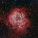 Rosette Nebula (NGC 2244),                                HappySkies