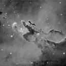 M16 The Eagle Nebula (Mono),                                Tim Jardine