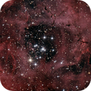 Rosette Nebula,                                Kevin Whiteside