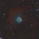 SH2-200 - The Bearclaw Nebula,                                Yizhou Zhang
