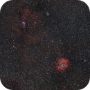 Rosette / Cone Widefield,                                tommy_nawratil