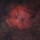 IC 1396 The Elephant's trunk Nebula,                                Igor Futak