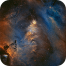 NGC 2264 - Cone, Fox Fur, & Hubble Variable Nebulas,                                Jason Wiscovitch