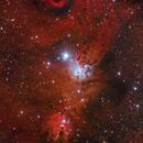 NGC 2264 Cone Nebula & Christmas Tree Cluster,                                Chuck Manges
