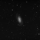 NGC 2903,                                Stefan Schimpf