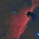 B33 Horsehead Nebula in Orion Ha_HaRGB,                                Pat Rodgers