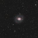 M94,                                Marian