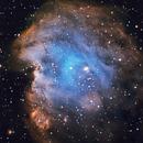 NGC 2175,                                David Quiles