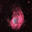Lower's Nebula_HOO_RGB,                                Mark