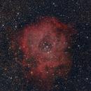 Rosette nebula Rosettennebel,                                Marco Wischumerski